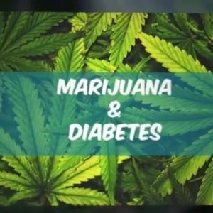 Treating Diabetes with Cannabis ¦ Medical Marijuana on Vimeo